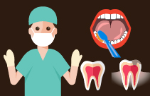 Pulp Tissue from Primary Teeth: New Source of Stem Cells