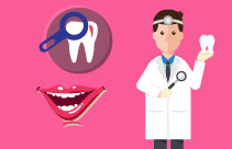 Dental Terminology and Professional Knowledge