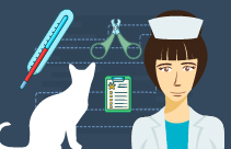 A Practitioner's Perspective on Veterinary Compounding