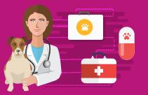Nursing the Pancreatitis Patient
