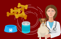 Nutrition: Managing Disease In Companion Animals