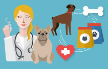Implementing The Aaha-avma Preventive Healthcare Guidelines For Dogs And Cats